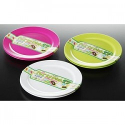 Party Plate
